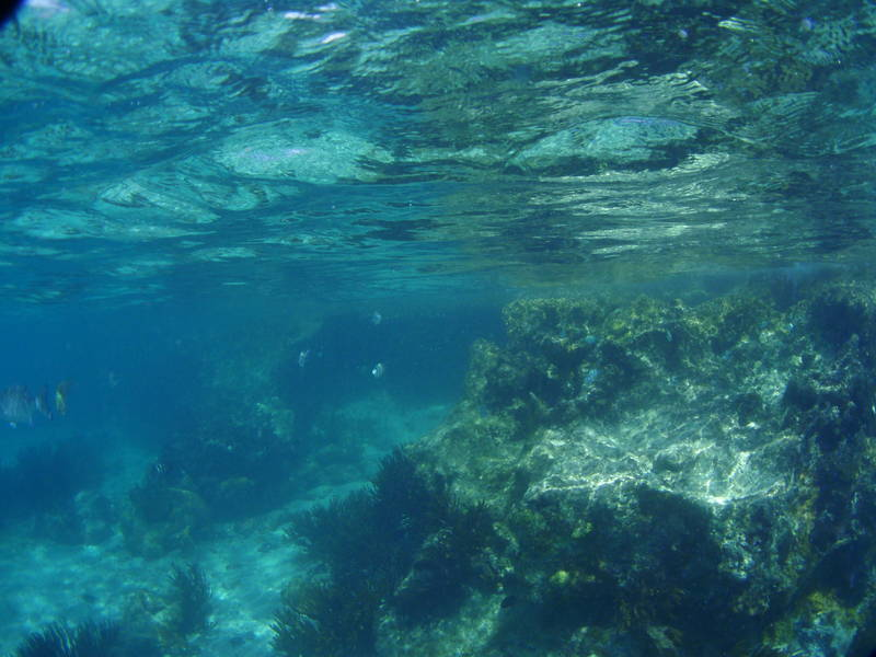 The Lighthouse reef