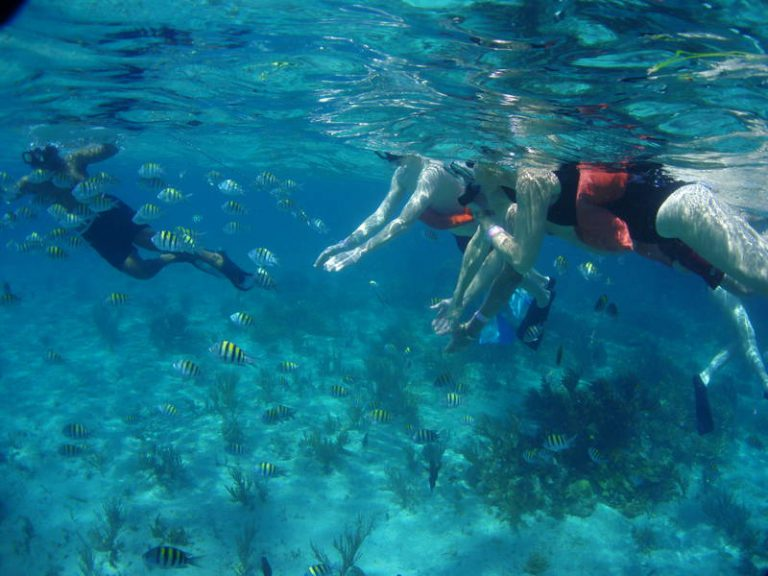 Snorkeling at The Lighthouse reef