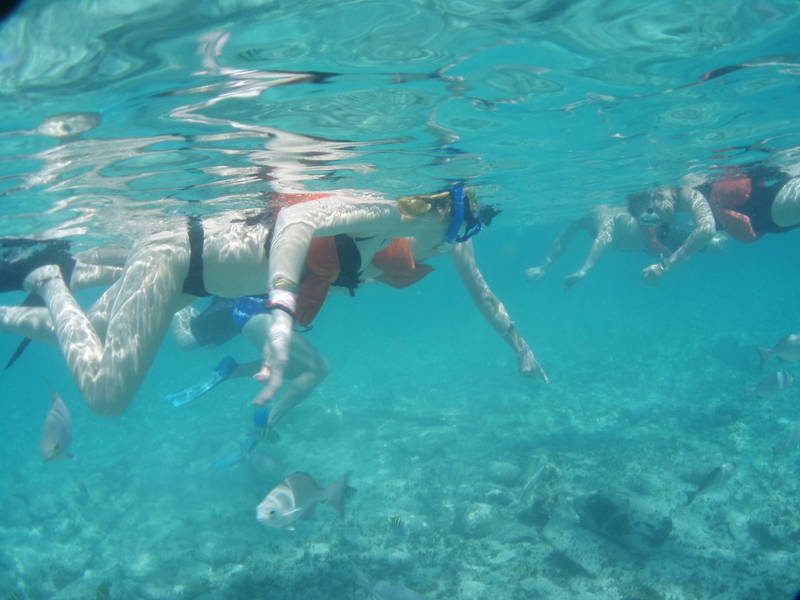 Snorkelling at The Lighthouse reef