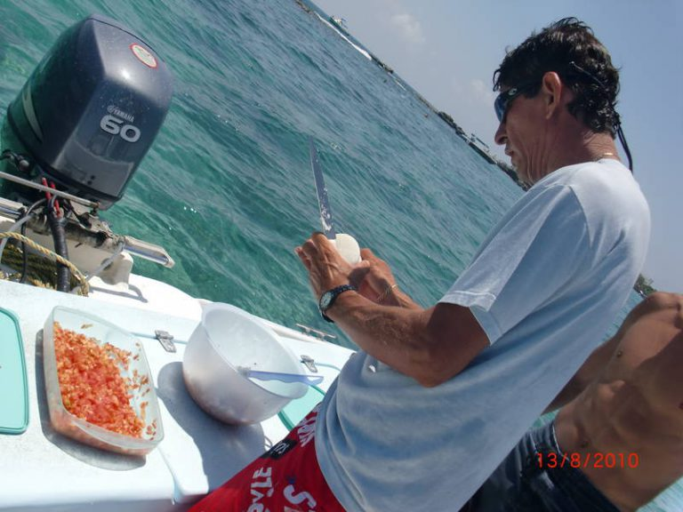 Whale Shark tour, lunch time!