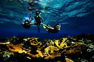 snorkeling_04_89ab5d5026 (1)