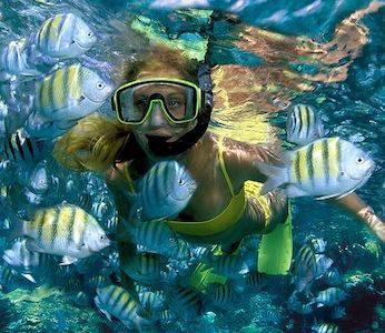 Snorkel Tours Isla Mujeres