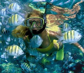 Snorkel Tours Isla Mujeres - Isla Mujeres Trips - Isla Mujeres, Cancun,  Riviera Maya Tours