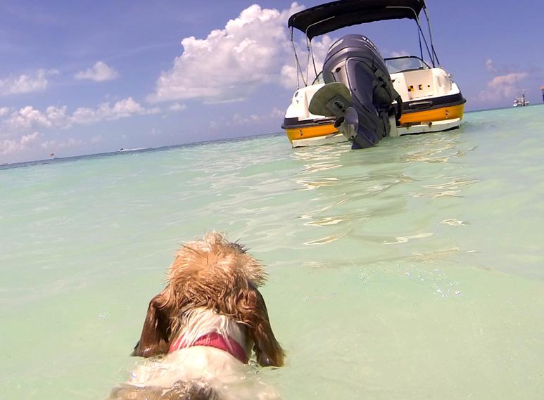 Nautik-Adventours-Cancun-Watersports-8