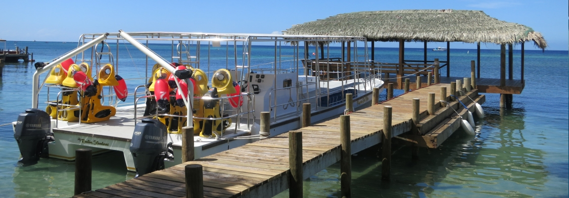 Ocean-connections-BOSS-roatan-1
