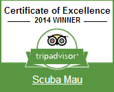 Scuba Mau receives Certificate of Excellence award