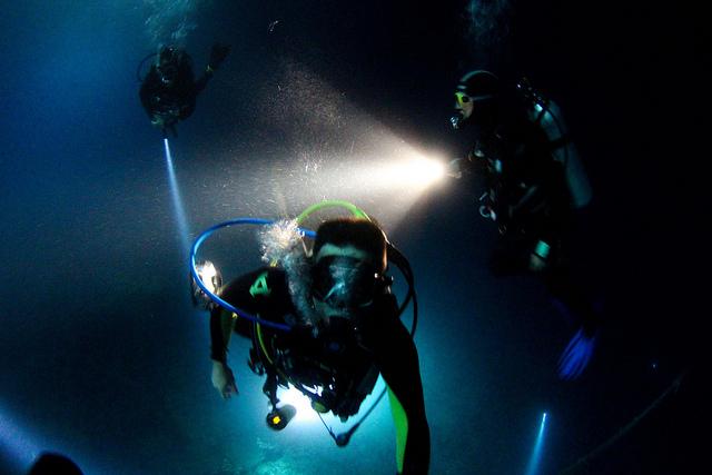 Cozumel night dives