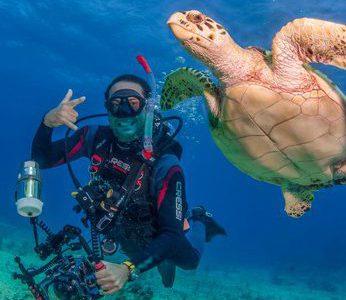 Scuba Dive Isla Mujeres