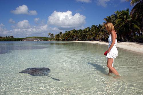Isla Contoy Tours Squalo Adventures-3