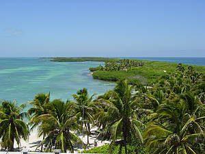 Isla Contoy Tours Squalo Adventures-4