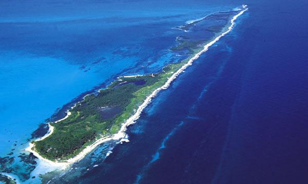 Isla Contoy Tours Squalo Adventures-5