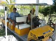 Isla Holbox Tours Squalo Adventures-5