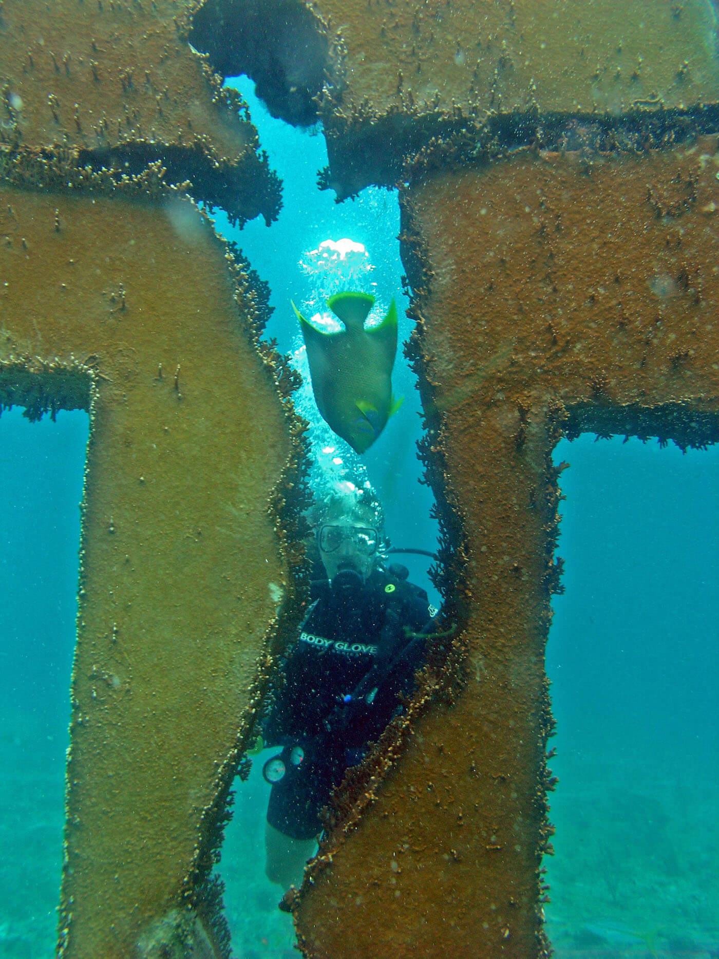Isla Mujeres Manchones Reef Snorkel Scuba Diving Squalo Adventures-18