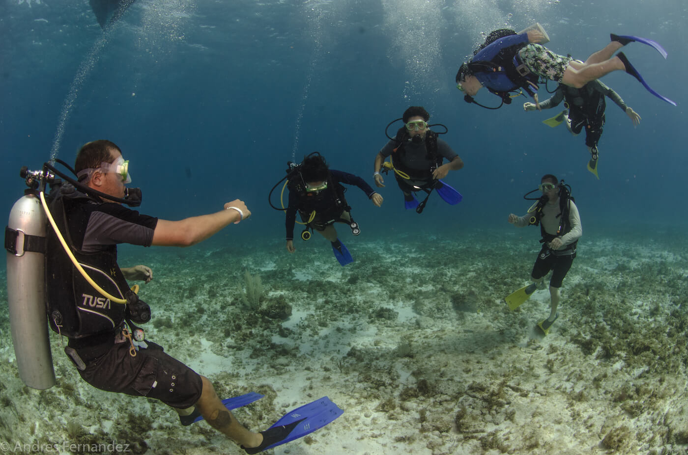Isla Mujeres Scuba Diving Courses Squalo Adventures Dive Shop-2