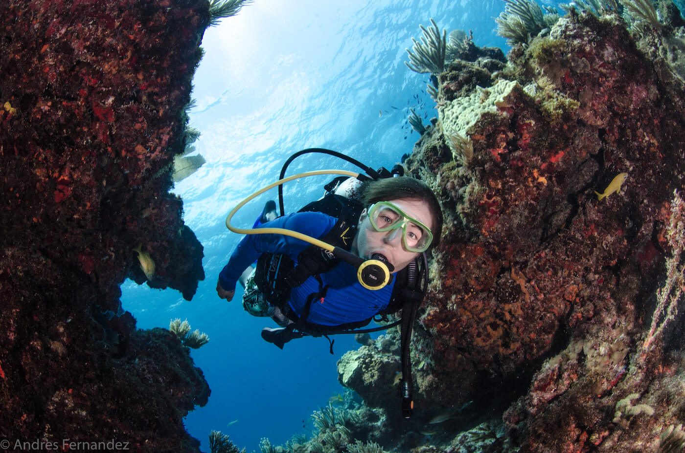 Isla Mujeres Scuba Diving Courses Squalo Adventures Dive Shop-27
