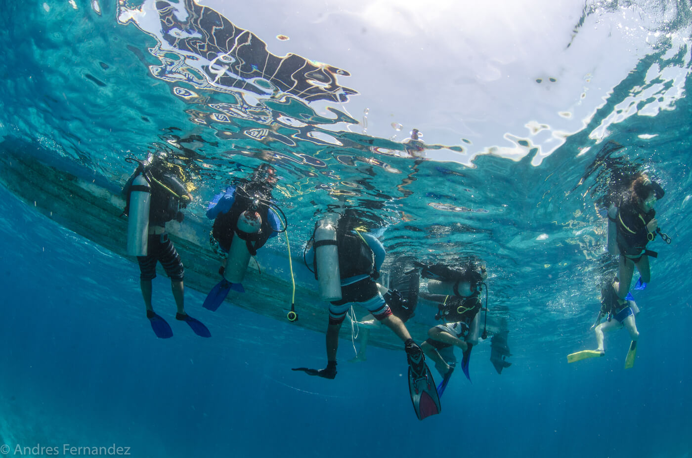 Isla Mujeres Scuba Diving Courses Squalo Adventures Dive Shop-30