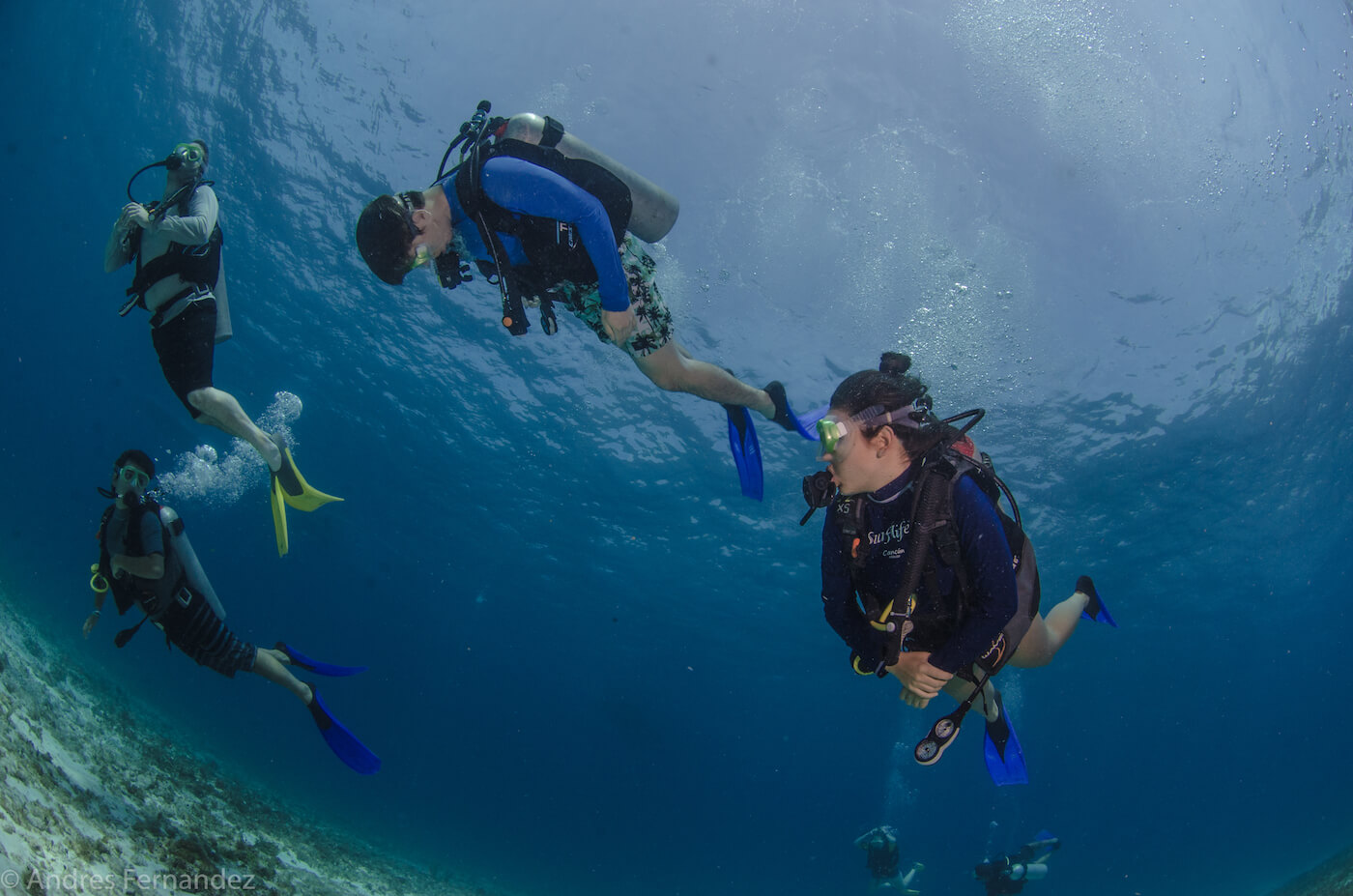 Isla Mujeres Scuba Diving Courses Squalo Adventures Dive Shop-7