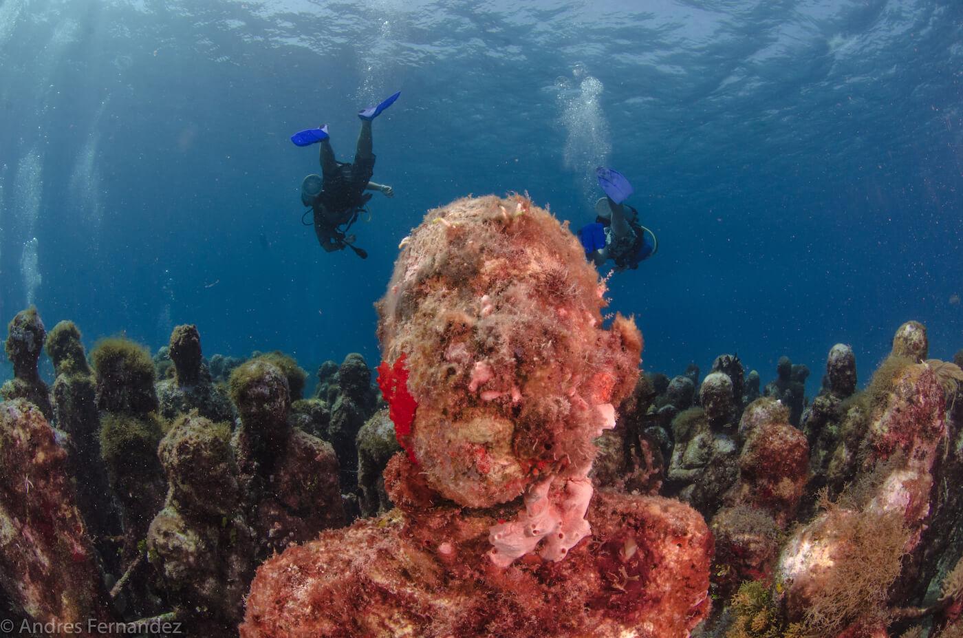 Isla Mujeres Scuba Diving MUSA Squalo Adventures-14