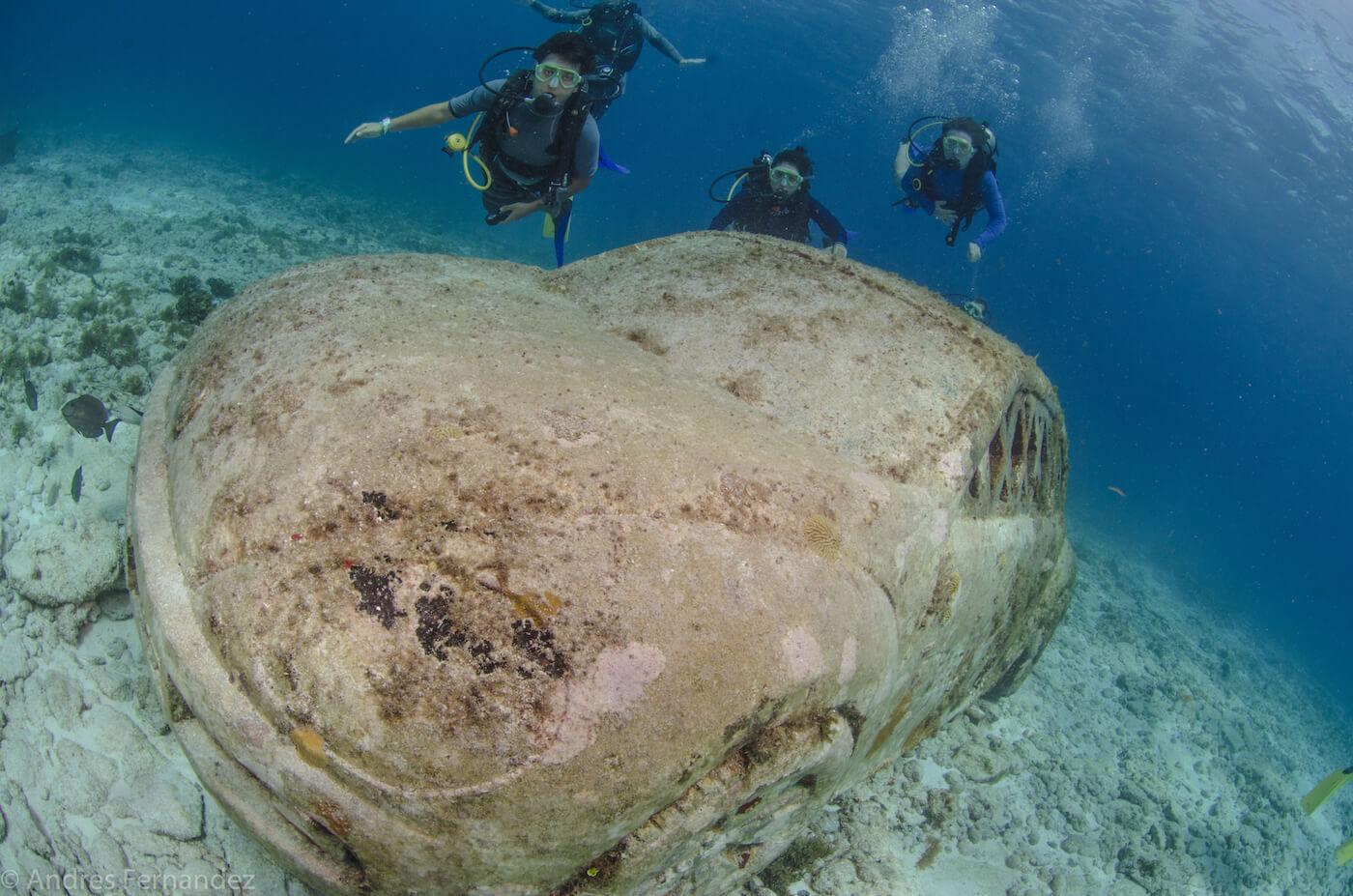 Isla Mujeres Scuba Diving MUSA Squalo Adventures-2