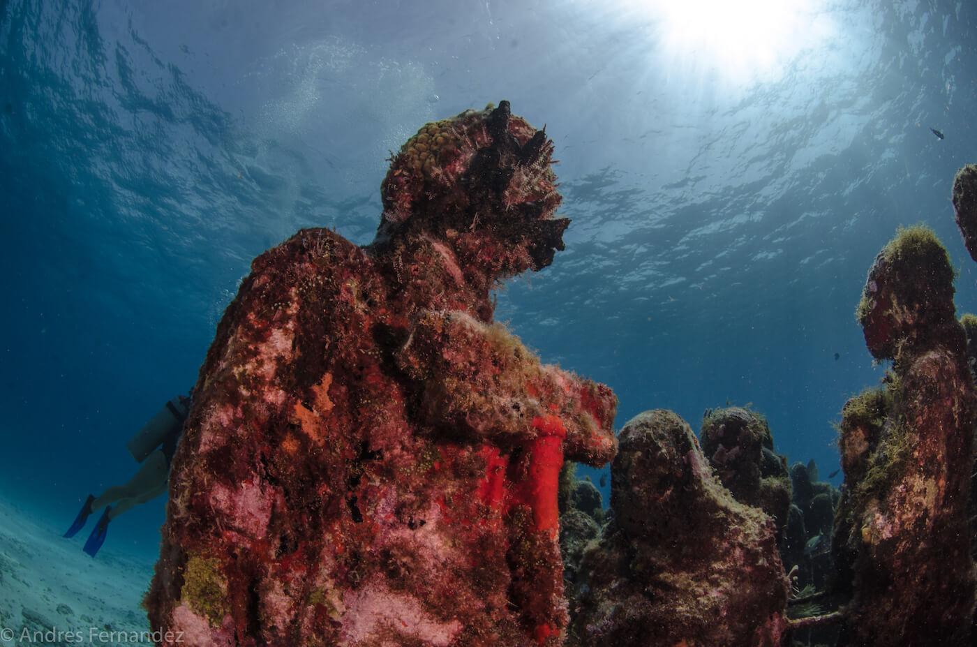 Isla Mujeres Scuba Diving MUSA Squalo Adventures-6