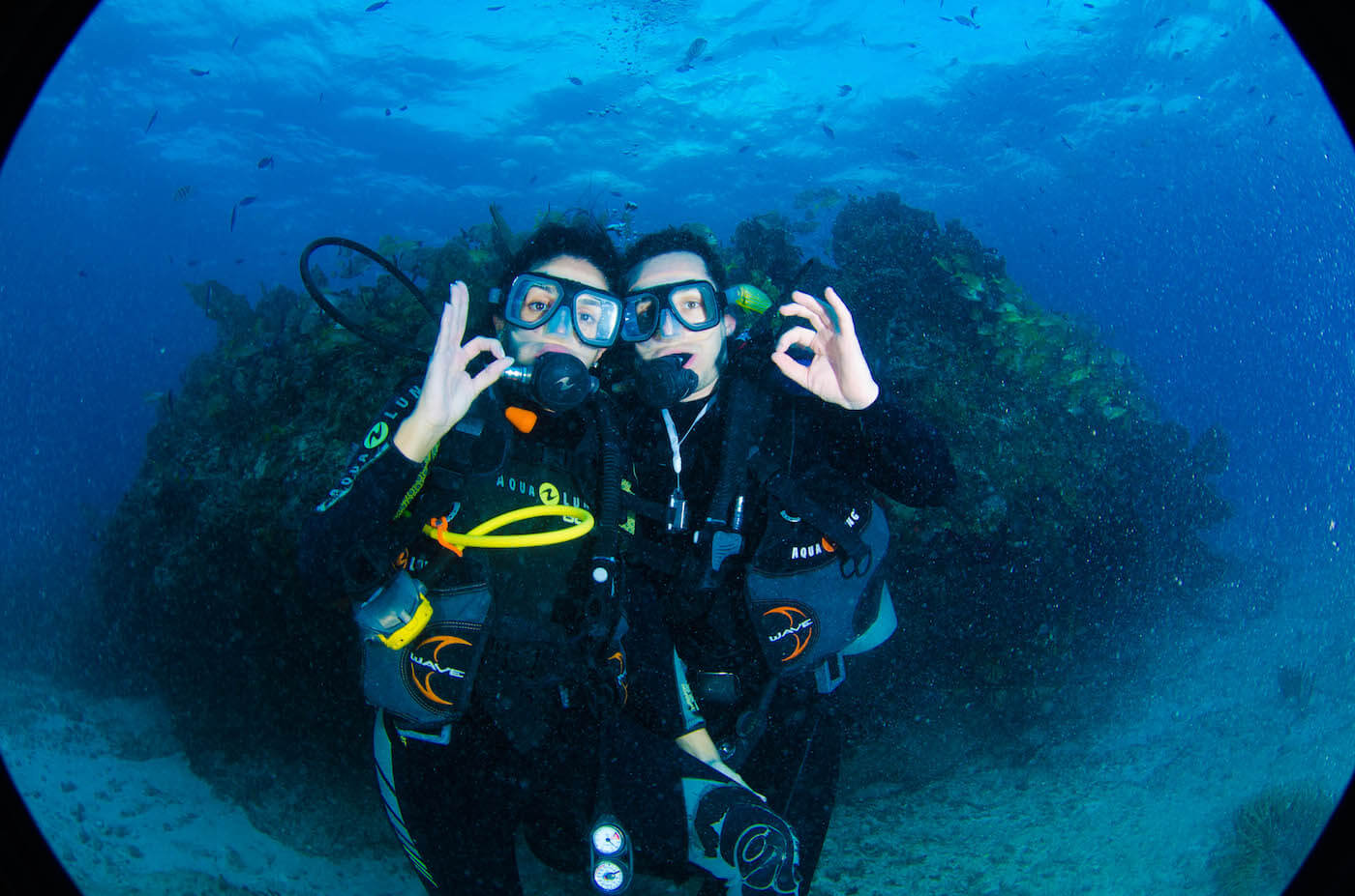 Isla Mujeres Scuba Diving Squalo Adventures-16