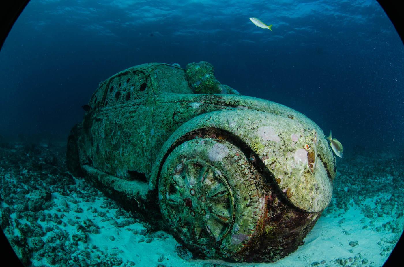 Isla Mujeres Scuba Diving Squalo Adventures-18