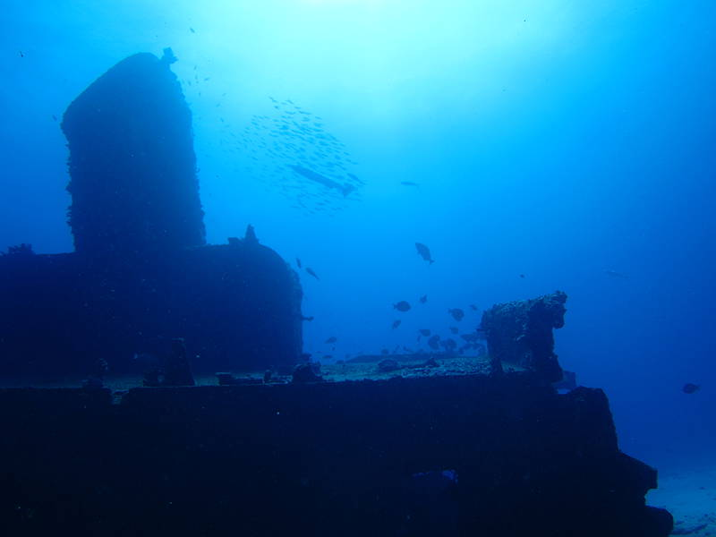 Isla Mujeres Shipwreck Scuba Diving Squalo Adventures-7