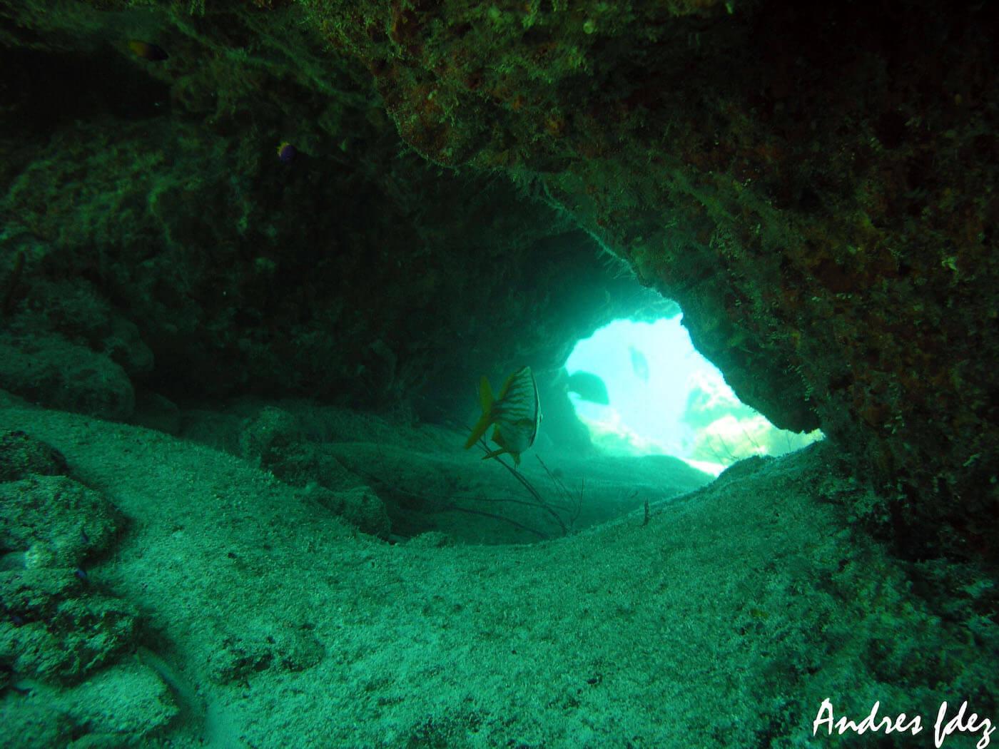 Isla Mujeres Snorkeling Scuba Diving Squalo Adventures-6