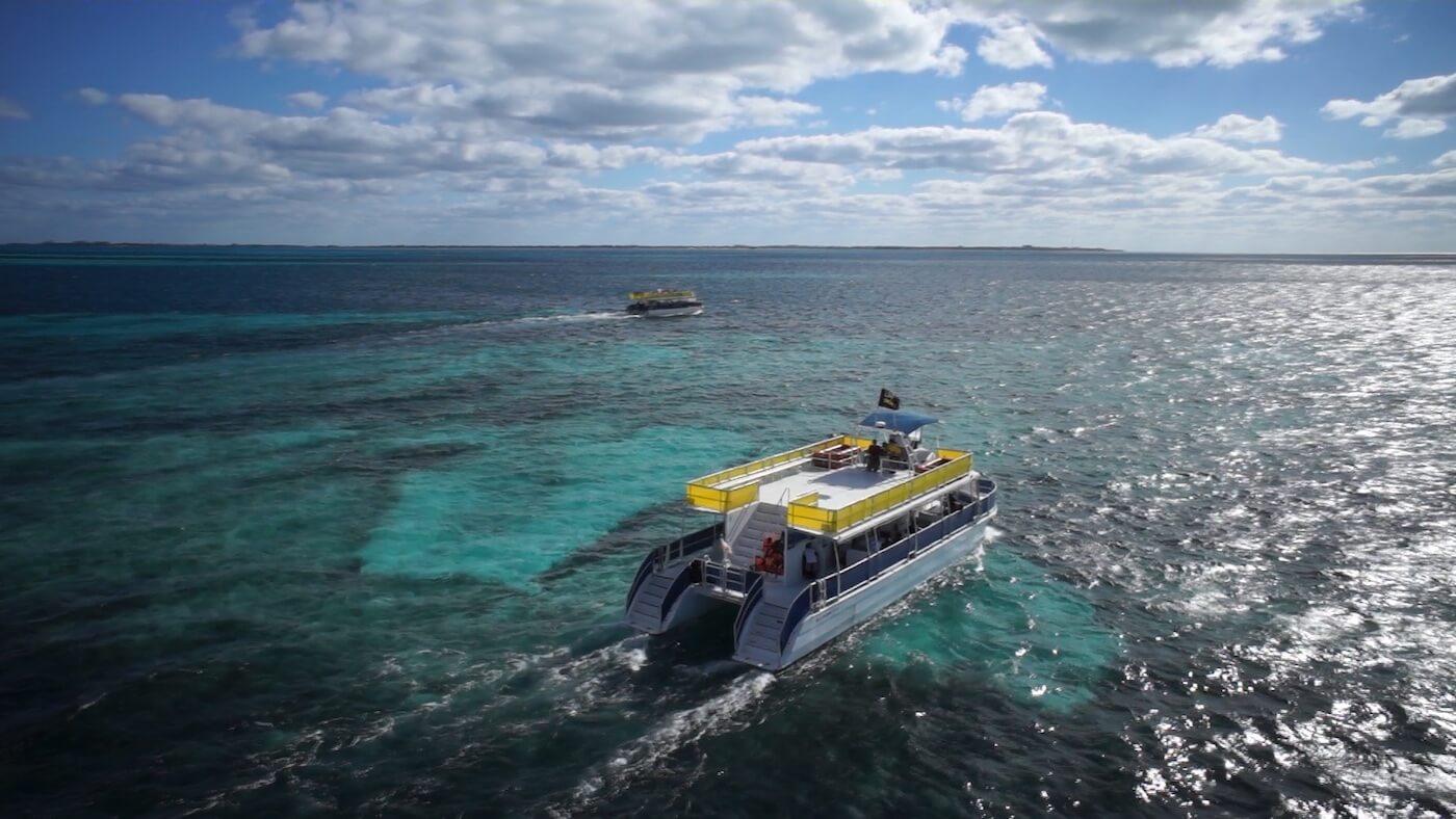 Whale-Shark-Tours-Snorkel-Cancun-Isla-Mujeres-Riviera-Maya-5